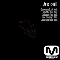 Avatar for the related artist American DJ