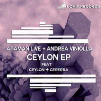 Avatar for the related artist Andrea Viniolla