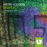 Avatar for the related artist Andre Volodin
