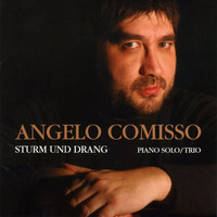 Avatar for the related artist Angelo Comisso