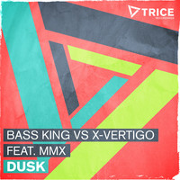 Avatar for the related artist Bass King