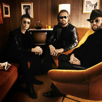 Image of Bee Gees linking to their artist page due to link from them being at the top of the main table on this page