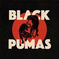 Avatar for the similar event headlining artist Black Pumas
