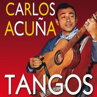 Avatar for the related artist Carlos Acuña