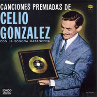Avatar for the related artist Celio Gonzalez