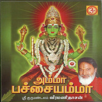 Avatar for the related artist Chinnaponnu
