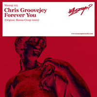 Avatar for the related artist Chris Groovejey