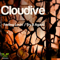 Image of Cloudive linking to their artist page due to link from them being at the top of the main table on this page