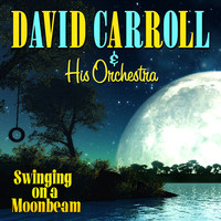 Avatar for the related artist David Carroll & His Orchestra