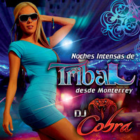 Image of Dj Cobra linking to their artist page due to link from them being at the top of the main table on this page