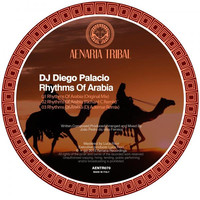 Image of DJ Diego Palacio linking to their artist page due to link from them being at the top of the main table on this page