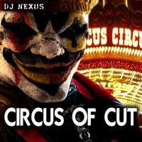 Avatar for the related artist DJ Nexus