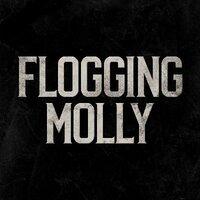 Avatar for the similar event headlining artist Flogging Molly
