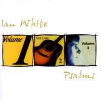 Avatar for the related artist Ian White