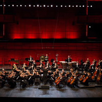 Image of Iceland Symphony Orchestra linking to their artist page due to link from them being at the top of the main table on this page