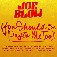 Avatar for the related artist Joe Blow