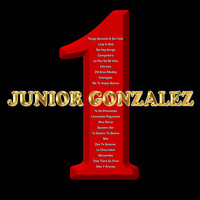 Image of Junior Gonzalez linking to their artist page due to link from them being at the top of the main table on this page