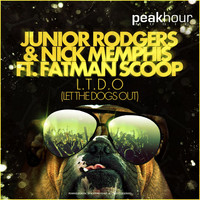 Avatar for the related artist Junior Rodgers