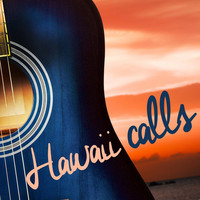 Avatar for the related artist Kalua Beach Boys