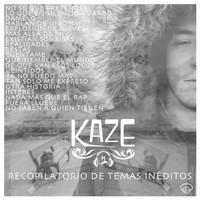 Avatar for the related artist Kaze