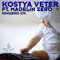 Avatar for the related artist Kostya Veter