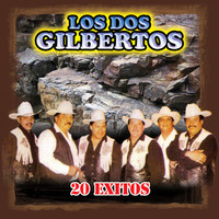 Avatar for the related artist Los Dos Gilbertos