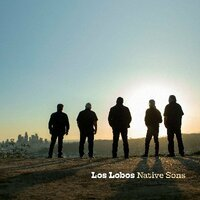 Image of Los Lobos linking to their artist page due to link from them being at the top of the main table on this page