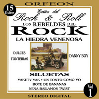 Avatar for the related artist Los Rebeldes del Rock