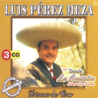 Image of Luis Pérez Meza linking to their artist page due to link from them being at the top of the main table on this page