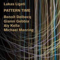 Avatar for the related artist Lukas Ligeti