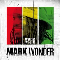 Avatar for the related artist Mark Wonder