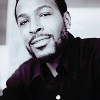 Image of Marvin Gaye linking to their artist page due to link from them being at the top of the main table on this page