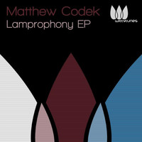 Avatar for the related artist Matthew Codek