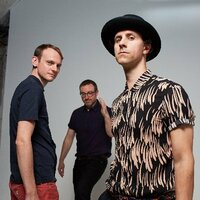 Avatar for the related artist Maximo Park
