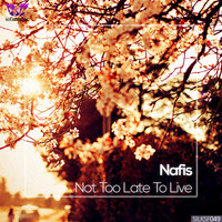 Avatar for the related artist Nafis