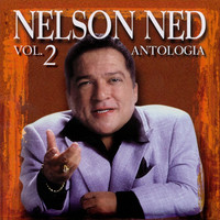 Image of Nelson Ned linking to their artist page due to link from them being at the top of the main table on this page