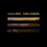 Avatar for the related artist Noah Pred