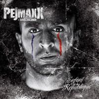 Avatar for the related artist Pejmaxx
