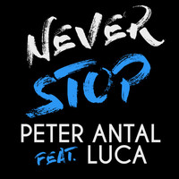 Avatar for the related artist Peter Antal