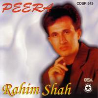 Avatar for the related artist Rahim Shah
