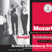 Avatar for the related artist Schoenberg Trio