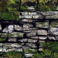 Avatar for the related artist Sean Danke