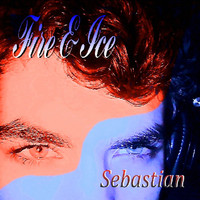 Image of Sebastian linking to their artist page due to link from them being at the top of the main table on this page