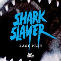 Avatar for the related artist Sharkslayer