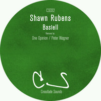 Avatar for the related artist Shawn Rubens