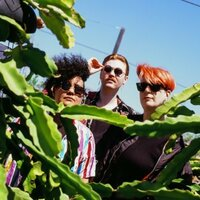 Thumbnail for the Queercore link, displaying genre artist Shopping