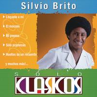 Avatar for the related artist Silvio Brito