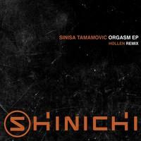 Avatar for the related artist Sinisa Tamamovic