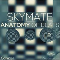 Avatar for the related artist Skymate