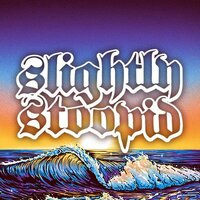 Avatar for the similar event headlining artist Slightly Stoopid